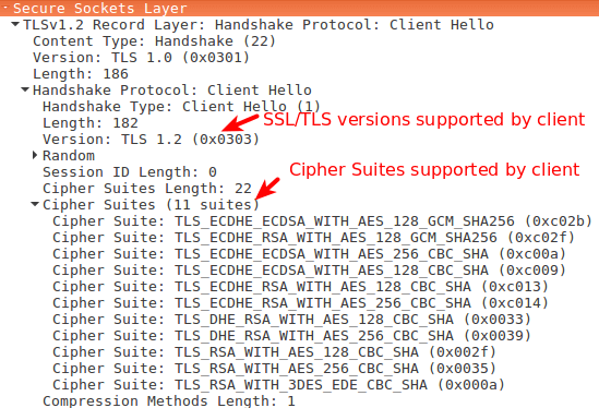 SSL/TLS Handshake Explained With Wireshark Screenshot