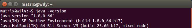 Install Oracle Java 8 on Ubuntu