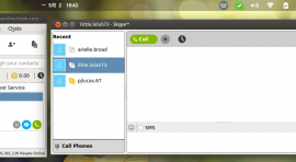 Install Skype on Elementary OS