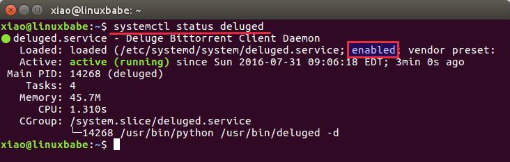 deluge webui ubuntu