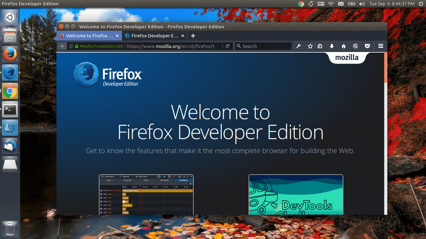 Firefox developer edition linux