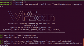 wp vulnerability scanner