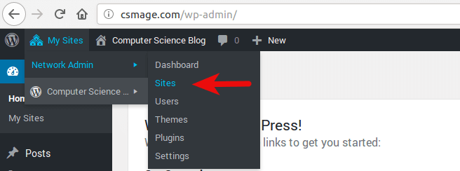 WordPress multisite htaccess