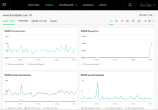 nginx amplify graphs