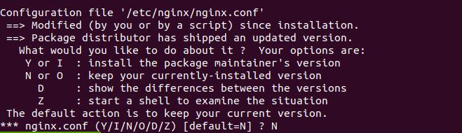 nginx 1.17.0 ubuntu