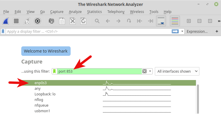 linux mint wireshare capture dns over tls traffic