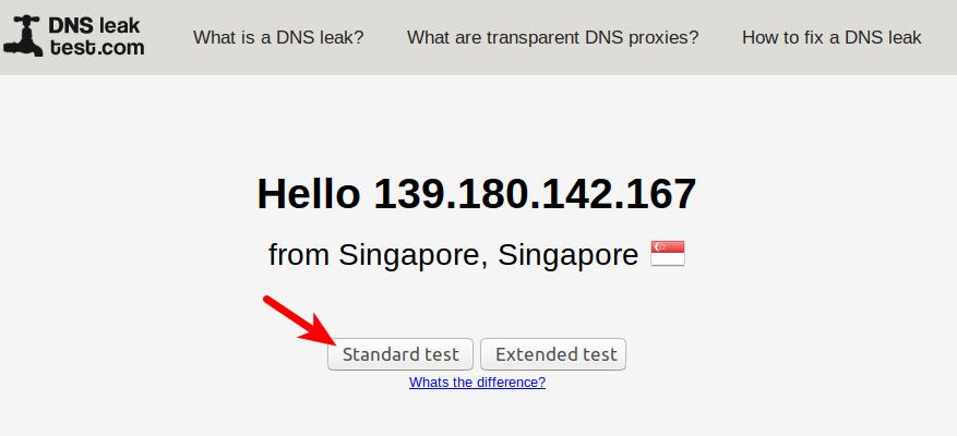 safervpn-dns-leak-test