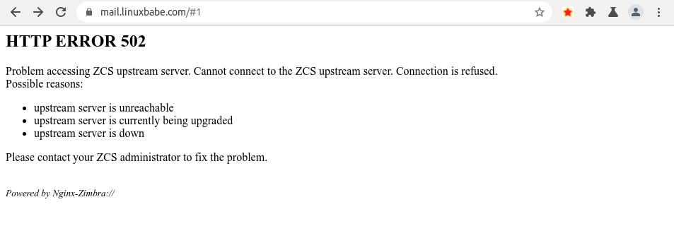 zimbra HTTP ERROR 502