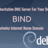 Set Up Authoritative DNS Server on Debian 10 Buster BIND9